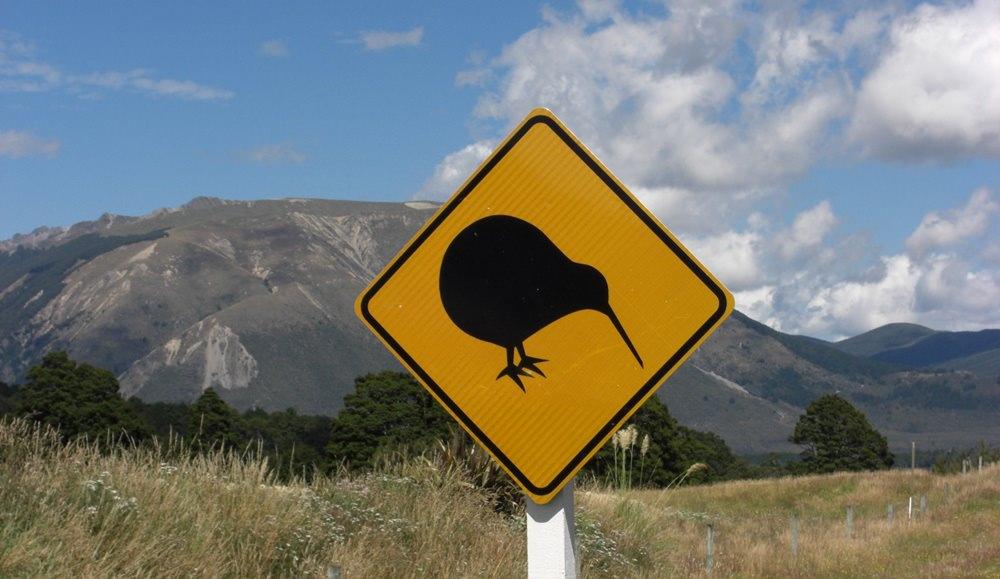 Straßenschild Kiwi in Neuseeland