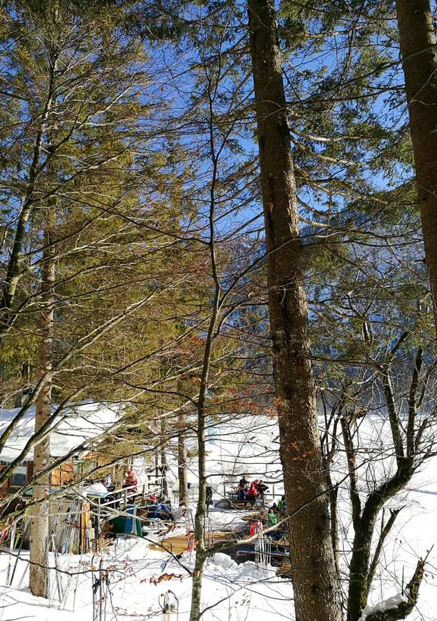 Ein wenig versteckt vom Wanderweg aus gesehen: die Mitterseehütte im Chiemgau
